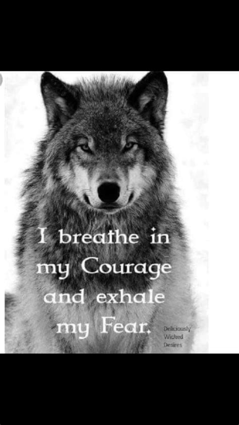 Idea by Jimmie Carroll on wolf | Wolf quotes, Wolf pack